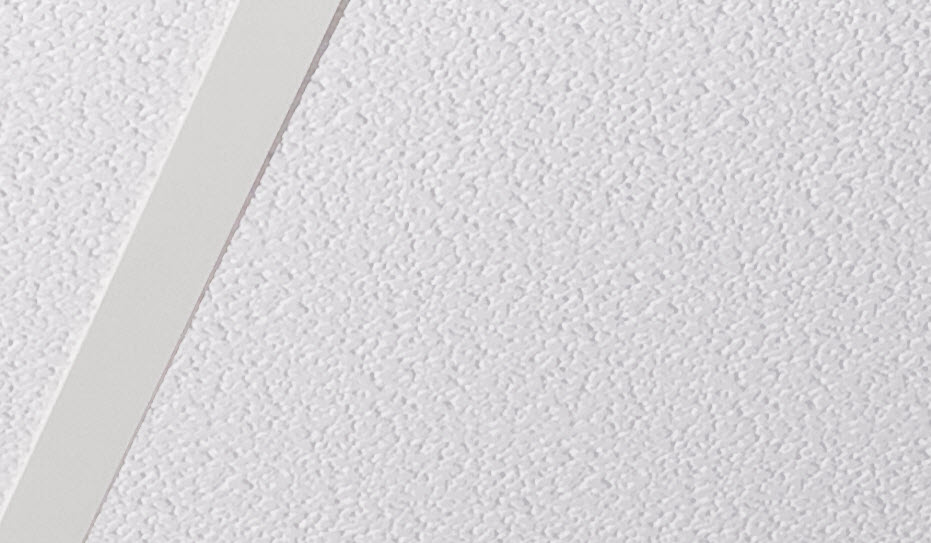 Click To View Stucco Pro White Ceiling