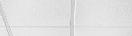 Revealed Edge Ceiling Tiles
