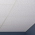 Click to view Printed Pro Ceiling